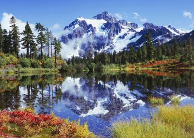 Snowy mountains and forest reflecting off of water