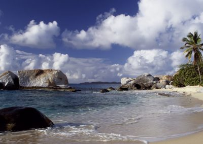 Rocky beach and palm trees with cloudy sky