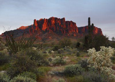 Beautifully shaded mountain range with cacti