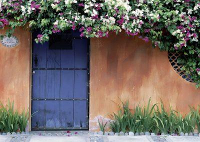 Blue door with flowers above it